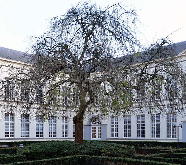 Gentse Rechtenfaculteit jubelend op weg naar 200 jaar